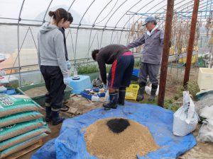 もみ殻,赤玉土,炭をまぜてもみ殻培地を作ります.