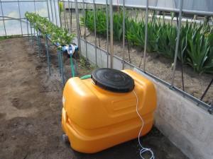 高設ベッドを設置し,イチゴを植え付けました.手前は水タンクです.