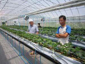 雫石町でなつあかりを栽培するTさん(右)