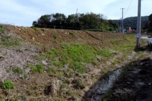 畦畔緑化をこころみる水田を下見に行きました.