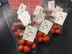 袋詰めしたクッキングトマト.夜市で販売されます.